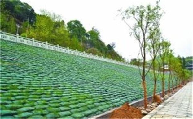 植生袋绿化锦绣川景区岸坡